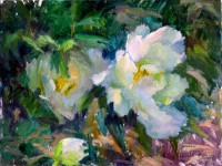 flowers_tree_peonies_o